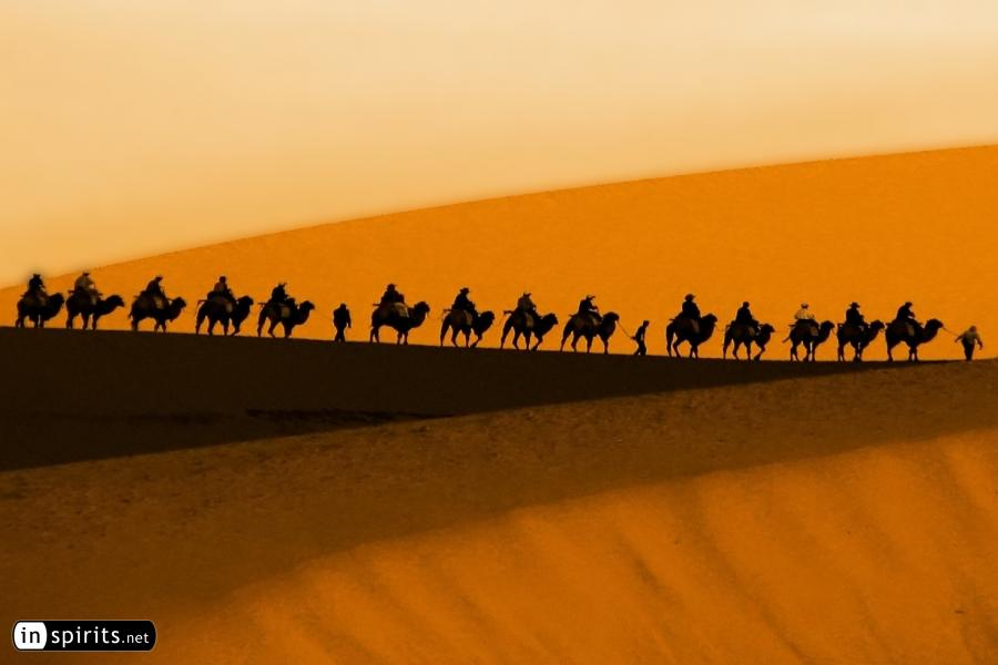 Silk Road Camel Caravan for Pinterest