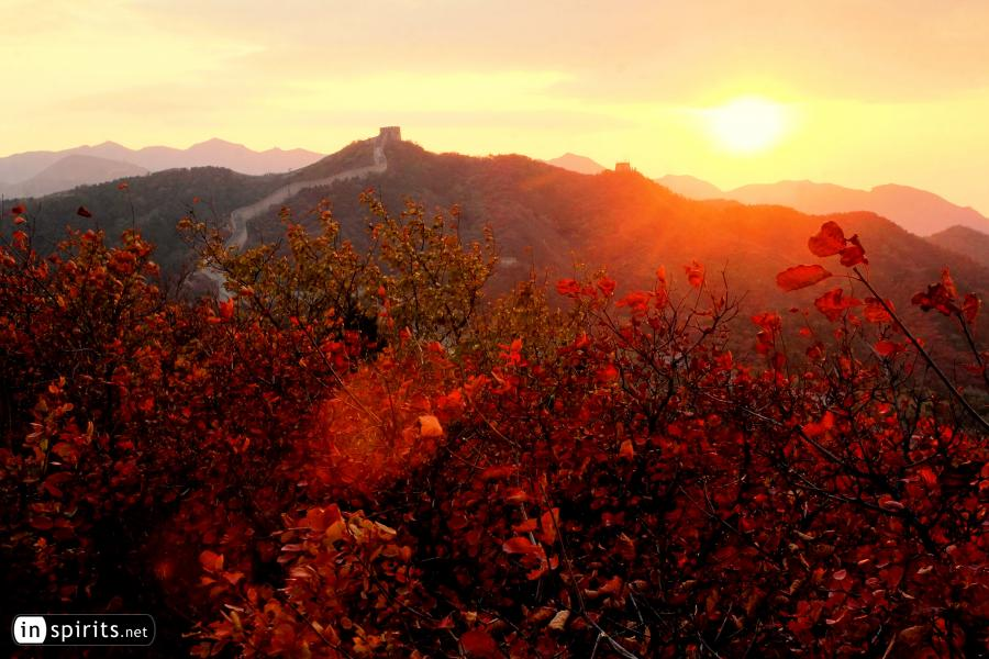 Red Leaves at the Badaling Great Wall at Sunset