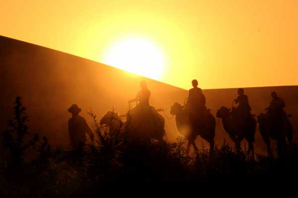 A camel trek riding in the sunset in Dunhuang's Gobi Desert